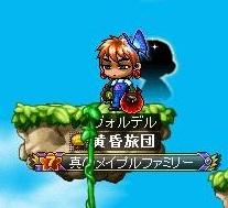 Maple101229_043153.jpg