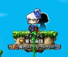 Maple101229_044027.jpg
